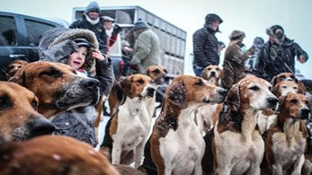 Thousands turn out to enjoy the tradition of Boxing Day meets