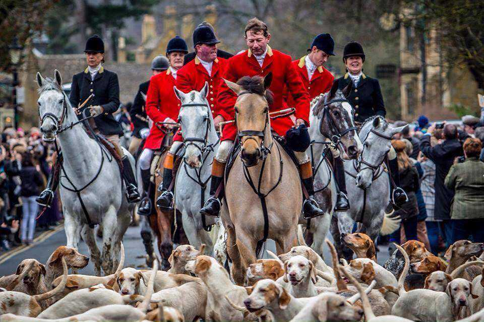 Support for Foxhounds remains strong at Scotland's New Year's Day meets
