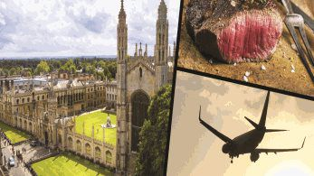 Alliance call on Cambridge University to stop using red meat as a scapegoat, after implementing flight ban for academics