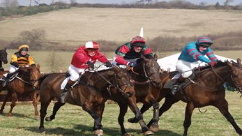 Point-to-point fixtures and how to watch the racing from home