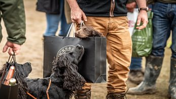 The Game Fair is set to go ahead 23rd-25th July at Ragley Hall