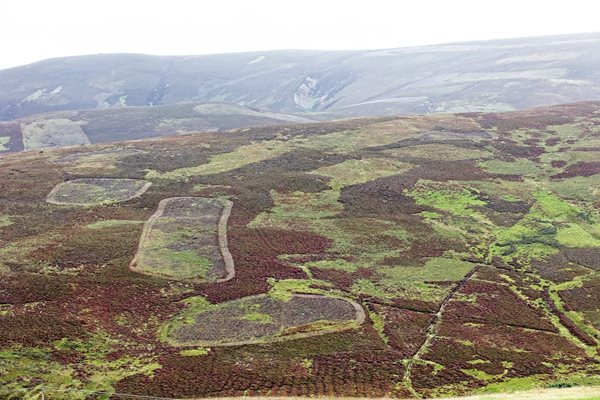 Countryside Alliance Briefing Note: Heather and Grass Burning