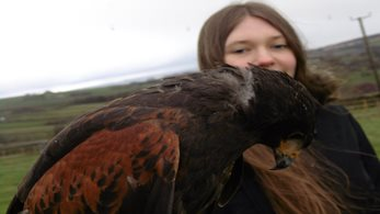 Falconry fun for Steiner School pupils