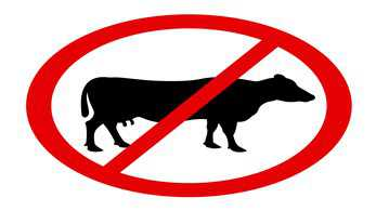 "Countryside Alliance respond to the ""short-sighted"" recent meat bans on university campuses"