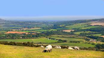 Lords call for radical rethink on rural policy