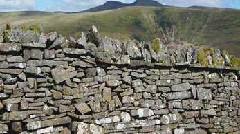 Understanding the history of traditional dry-stone walling